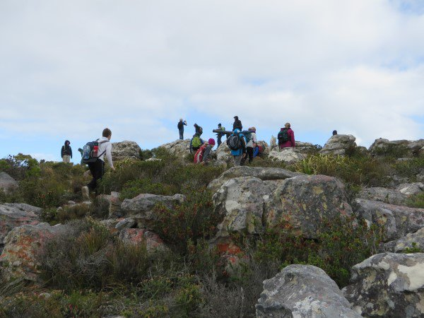 Cape Point 2014 (17)