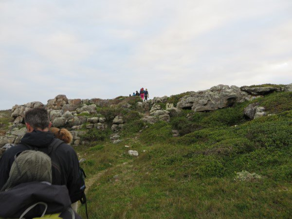Cape Point 2014 (47)