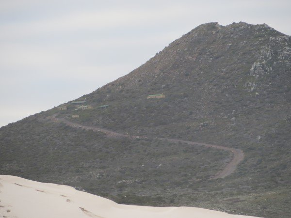 Cape Point 2014 (62)