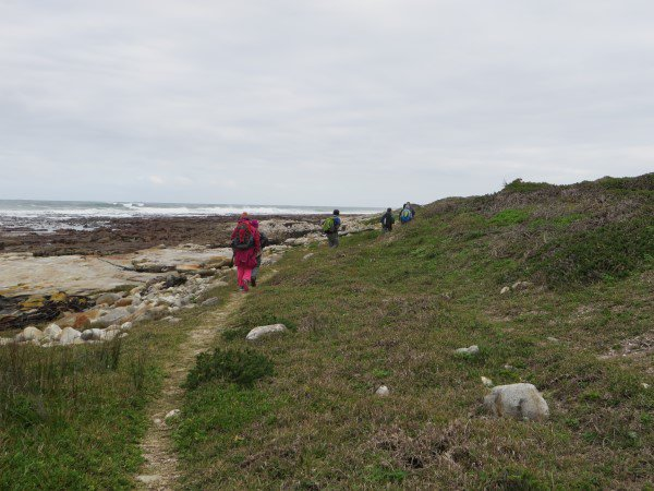 Cape Point 2014 (74)