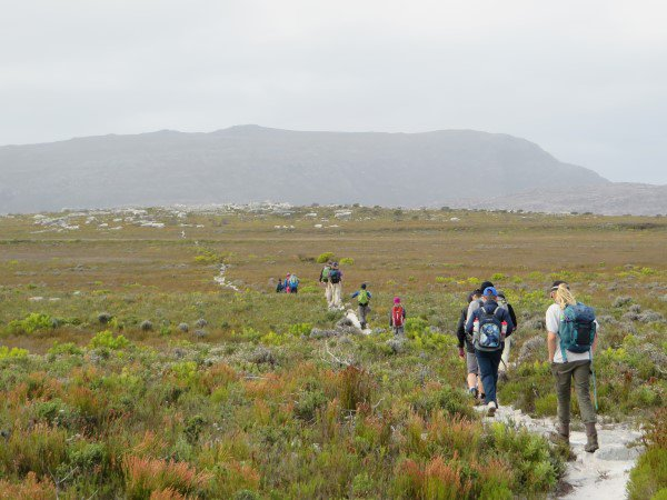 Cape Point 2014 (89)