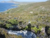 Cape Point 2014 (20)