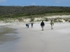 Cape Point 2014 (27)