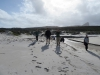 Cape Point 2014 (28)