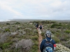 Cape Point 2014 (45)