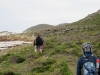 Cape Point 2014 (48)