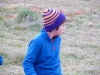 Cape Point 2014 (54)