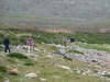 Cape Point 2014 (76)
