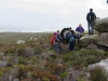 Cape Point 2014 (82)