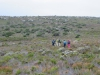 Cape Point 2014 (83)