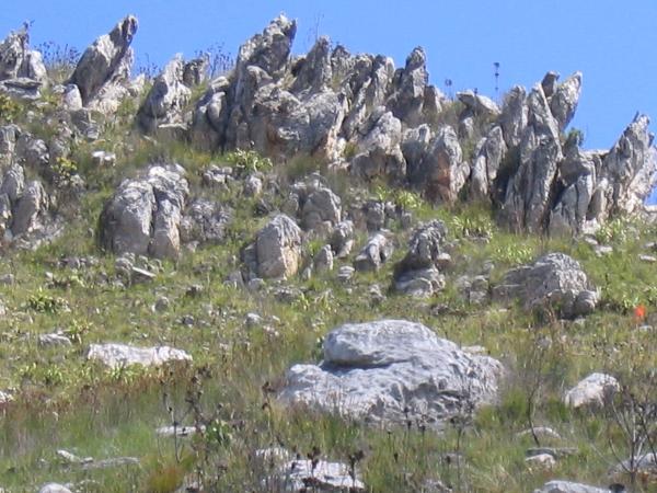 Finger Rocks