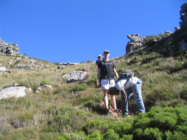 table-mountain-043