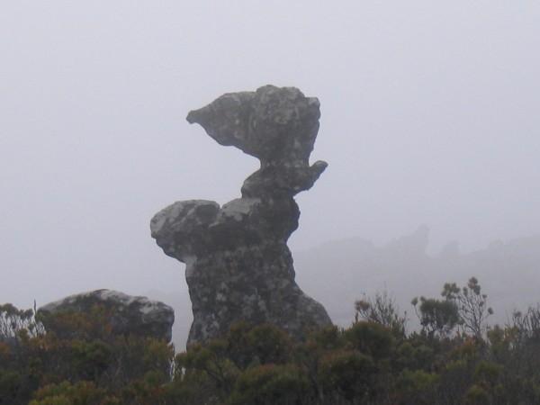 table-mountain-041