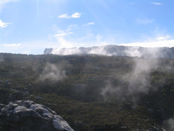table-mountain-052