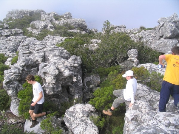 table-mountain-061