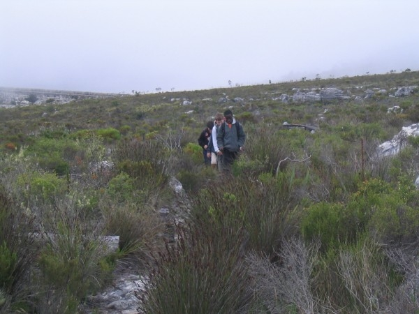 table-mountain-091