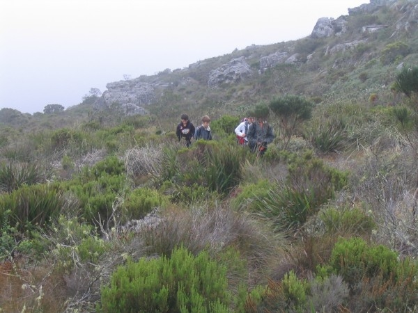 table-mountain-095