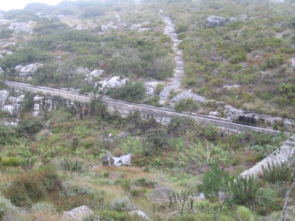 table-mountain-105