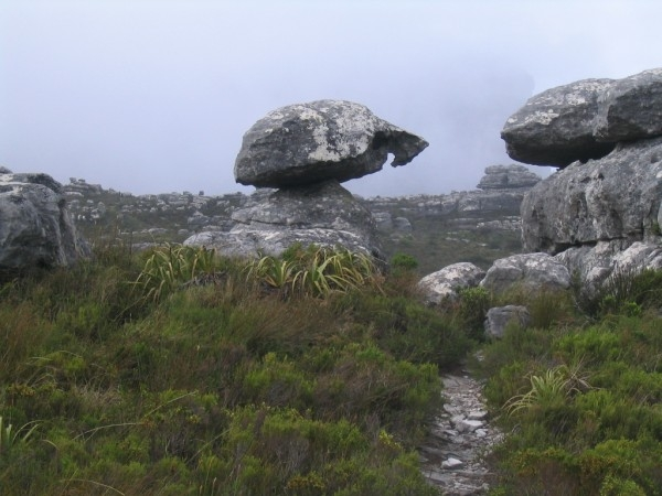 table-mountain-110
