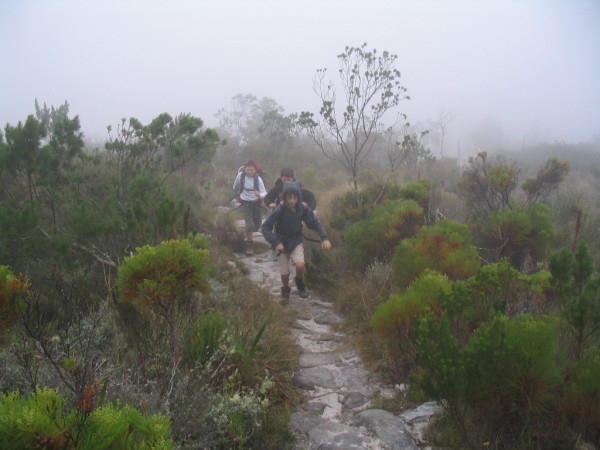table-mountain-122