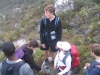 table-mountain-039