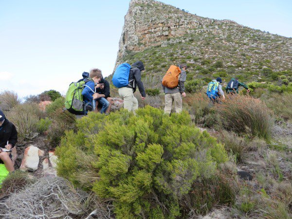 Cape Point 2014 (13)