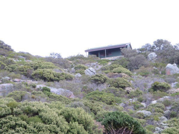 Cape Point 2014 (38)