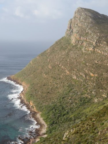 Cape Point 2014 (5)