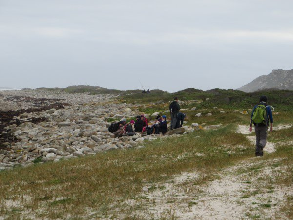 Cape Point 2014 (73)