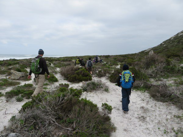 Cape Point 2014 (77)