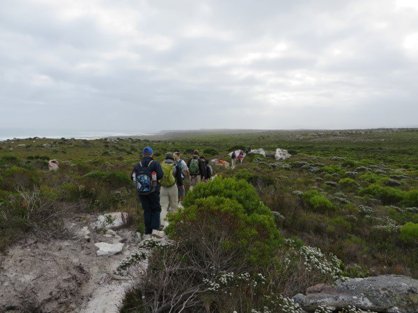 Cape Point 2014 (84)