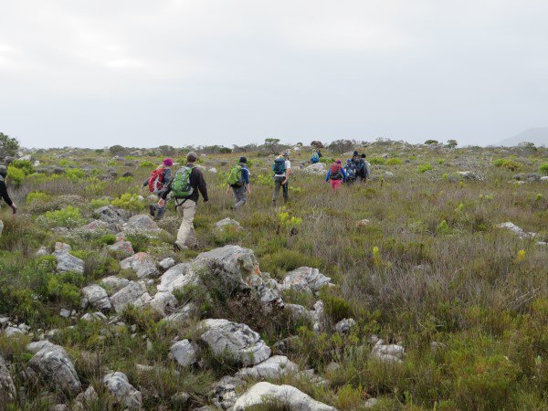 Cape Point 2014 (88)