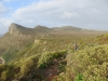 Cape Point 2014 (1)