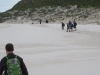Cape Point 2014 (57)