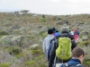 Cape Point 2014 (79)