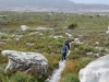 Cape Point 2014 (90)