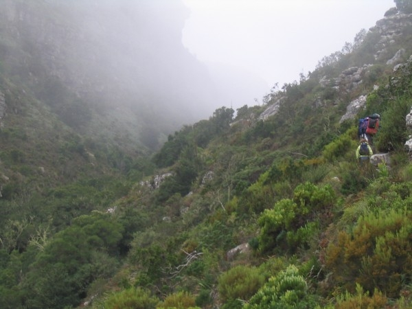 Disa Gorge