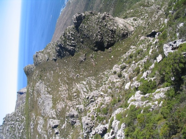table-mountain-036