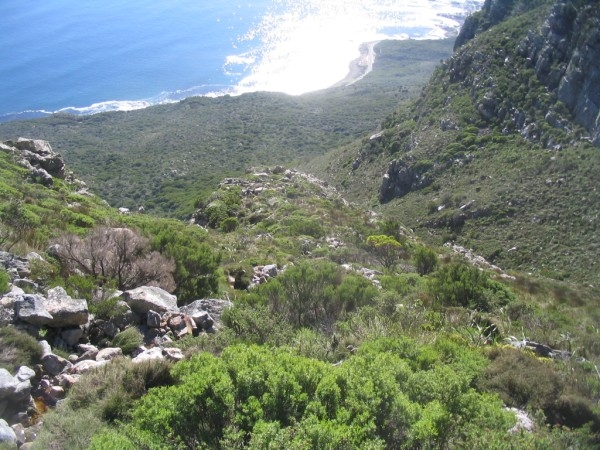 table-mountain-048