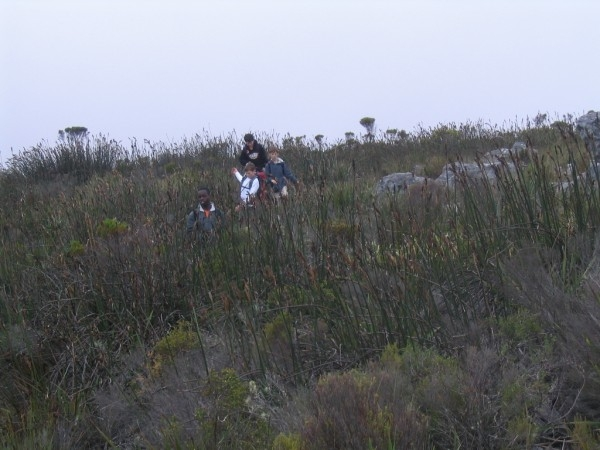 table-mountain-092