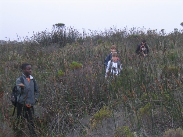 table-mountain-093
