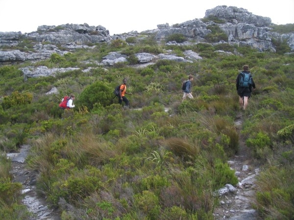 table-mountain-109