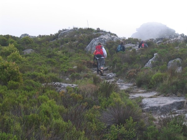 table-mountain-111