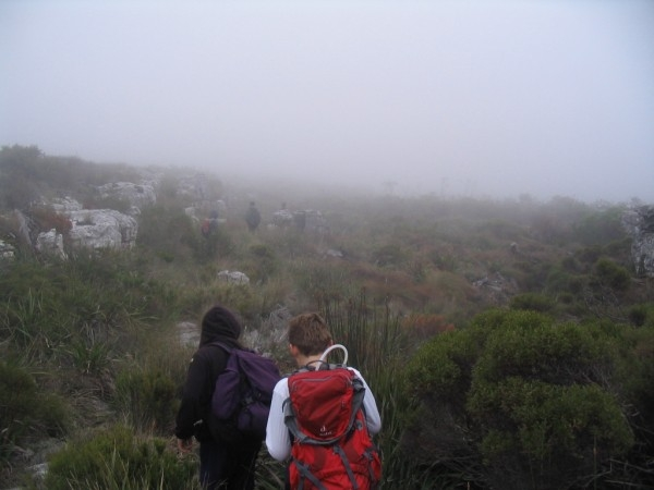 table-mountain-120